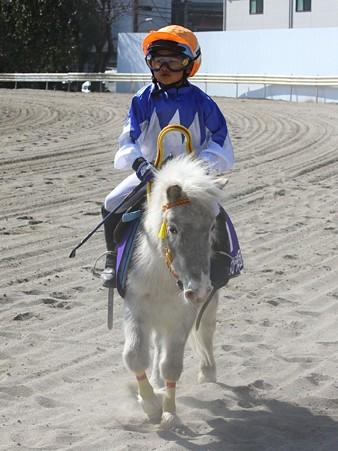 120219ポニーレースin川崎-レース後-7番テンミリリットル号と佐藤翔馬くん