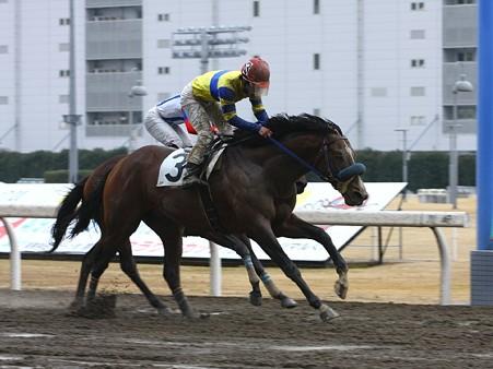 120301川崎08R未来賞C2選抜馬優勝ドリームサンセール