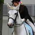 写真: 川崎競馬の誘導馬05月開催 誕生日記念レースVer-10-large
