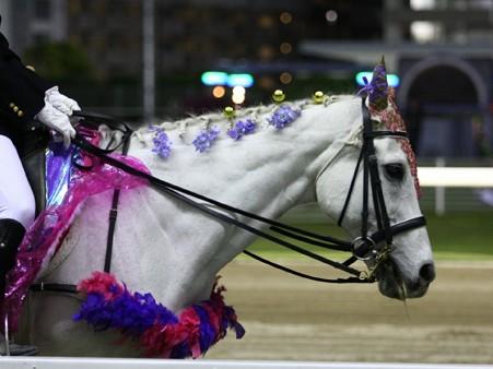 川崎競馬の誘導馬05月開催 藤Ver-120514-12