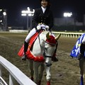 写真: 川崎競馬の誘導馬05月開催 重賞Ver-120516-05-large