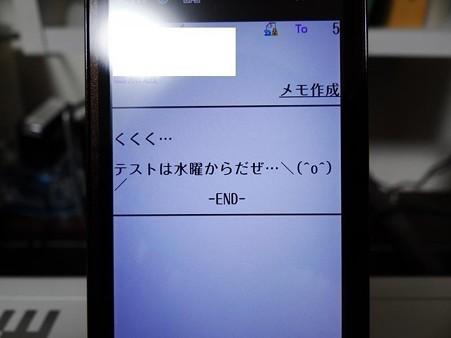 DSC04645_R