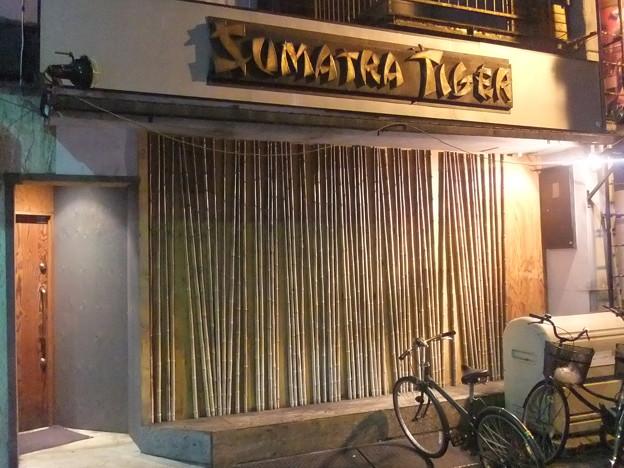 SUMATRA TIGER スマトラタイガー