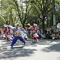 勇舞会_05 -  「彩夏祭」 関八州よさこいフェスタ 2011