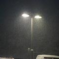 Photos: Snow01292012dp2