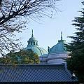 表慶館と池田門
