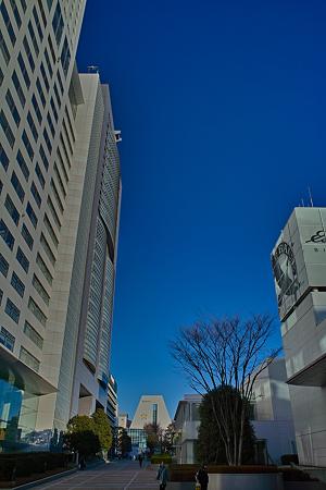 新宿の朝SDIM0053
