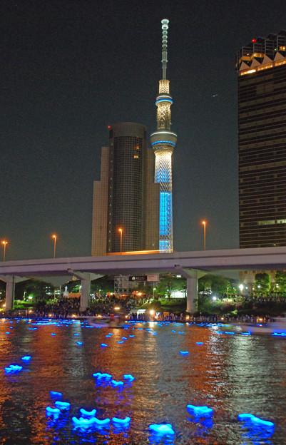 東京ホタル2