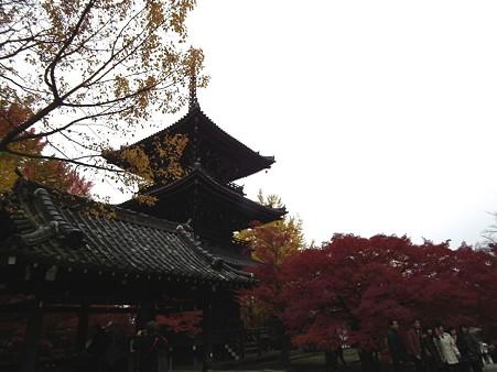 京都 408
