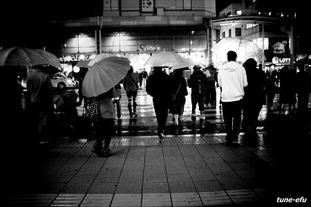 横断歩道に夜の雨