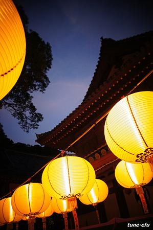 中国盆の夜