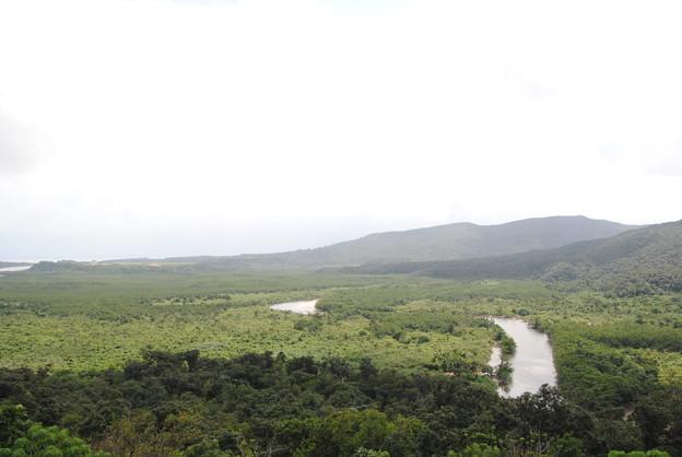 展望台から見た仲間川とマングローブ林DSC_0262