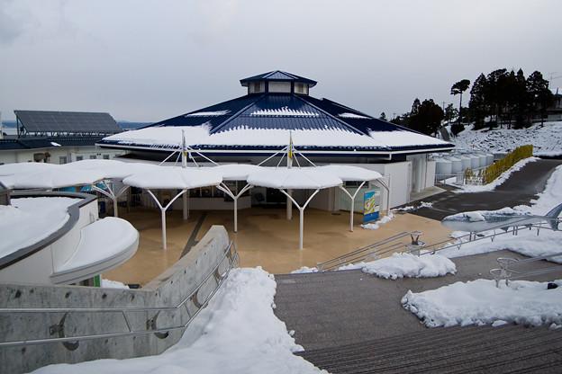写真: notojima120205001