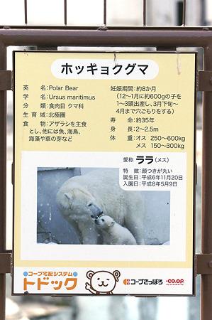 mauyama110705130