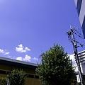 写真: 2011-08-29の空