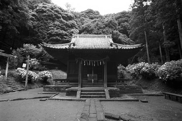 白山神社(モノクロフィルム)