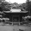 Photos: 白山神社(モノクロフィルム)