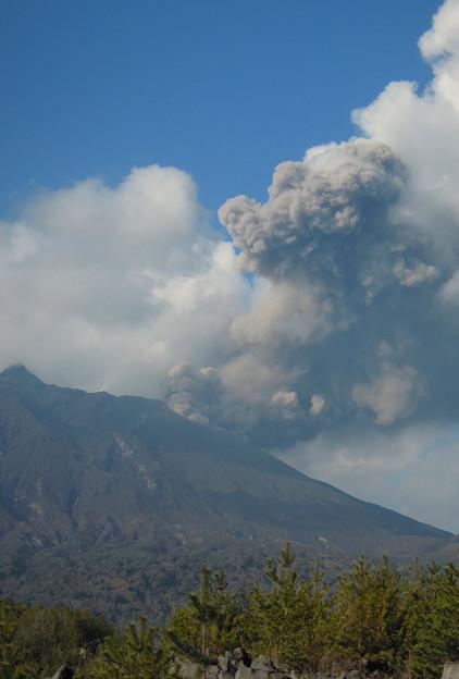 さくらじま噴火
