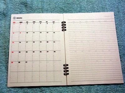 2012diary08