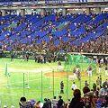 Photos: 日台野球7
