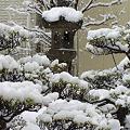 Photos: 日記 001