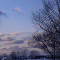 夕暮れの雪景
