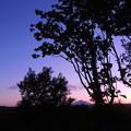 山と夕日とお月様