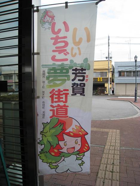 「いい芳賀いちご夢街道」おとちゃん 茂木駅
