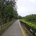 漫湖公園3