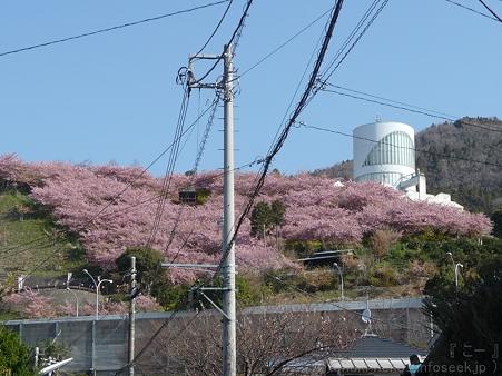 120329-松田山入口 (3)