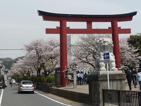 120413-八幡さま (68)