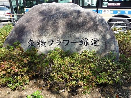 110622-東横廃線 反町→横浜 (81)