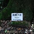 写真: 20110716_171015_raw
