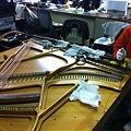 写真: 弦張り作業