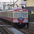 Photos: 伊豆箱根鉄道 駿豆線 1100系