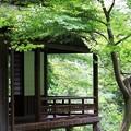 写真: 2012.06.18 三渓園 月華殿
