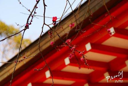 紅と朱・・荏柄天神社・・6
