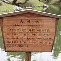 Photos: 110513-20栗林公園・夫婦松
