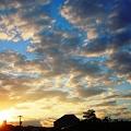 真夏の夜明け in 千光寺山