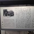 Photos: 初山06