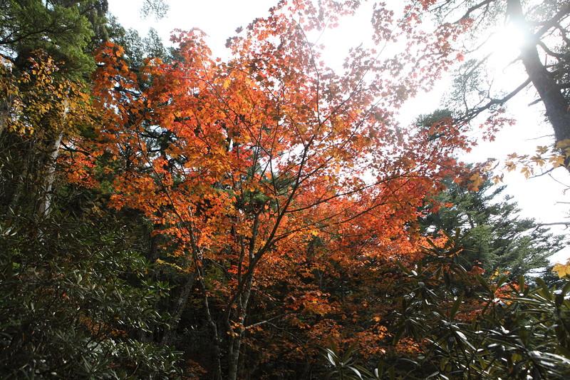IMG_4885金峰山登山