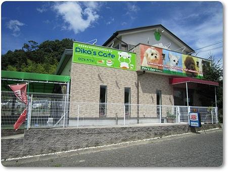 20110626 Piko's Cafe