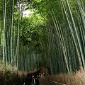 大阪 兵庫 京都 滋賀 奈良(関西)