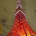 Photos: クリスマス・ライトダウンストーリーにて