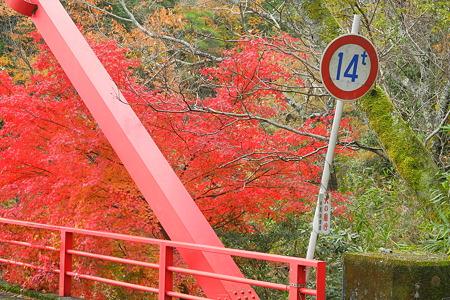 津風呂湖の紅葉2011-1