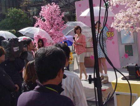 DSC04501-120406mbs-sakura