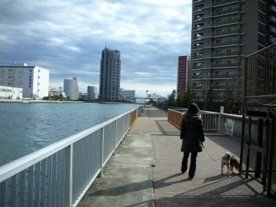 川沿い遊歩道