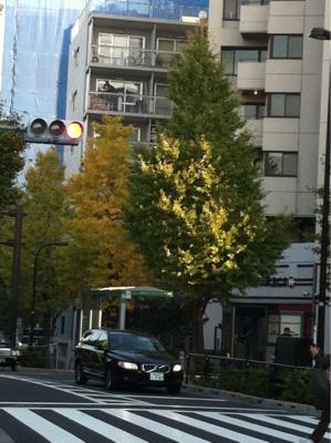 原宿駅前も色づいて